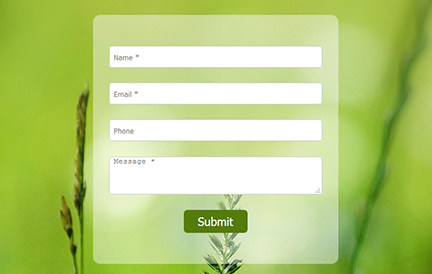contact form sample image